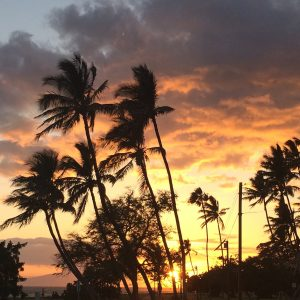May:  We escaped to Maui for almost two weeks, and it was amazing.  We played, we relaxed, we explored, and we spent time together.  Perfection.